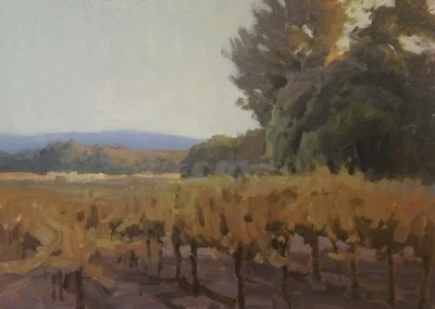 "John Poon - ""Vineyard Light"", 12x16, Acrylic"