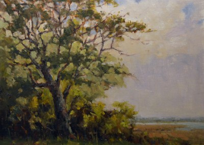 "Perry  Austin - ""Live Oak"", 12x16, Oil, SOLD"