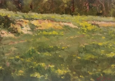 "Perry Austin - ""Clay Bank"", 8x16, oil"