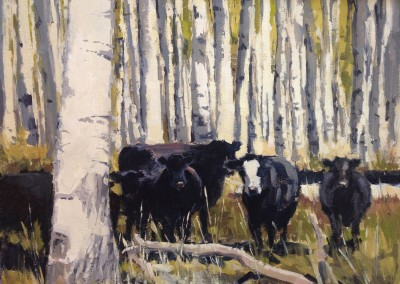 "Kate Starling	- ""Aspen Grove"", 16 x 20, Oil"