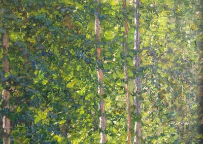 "Ivan Kugach - ""Birches"", 20x14, Oil"