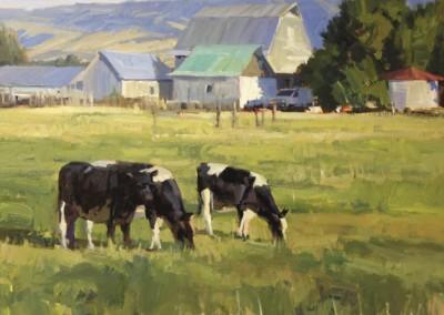 John Poon - Sweet Grass, 24 x 30, acrylic, SOLD