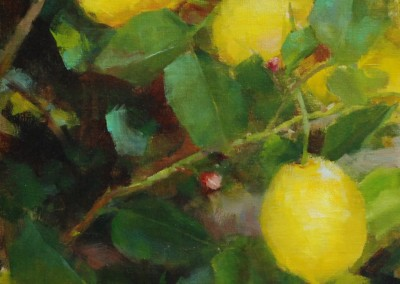"Kathy Anderson - ""Three Lemons"", 12x9, 1900"