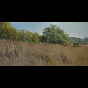 "Trish Beckham - ""Tuscawilla Preserve"", 18x36, 4000"