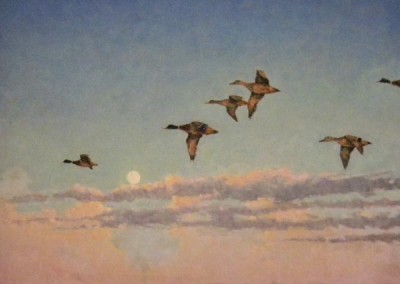 "Perry Austin ""Mallards over SW Harbor"" 24x30, oil, 4000"