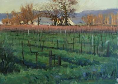 John Poon - Spring Vinyard, 20x24, SOLD