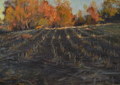 """Kenn Backhaus - """"Corn Stubble Fall"""", 14x18, Oil, Sold"""