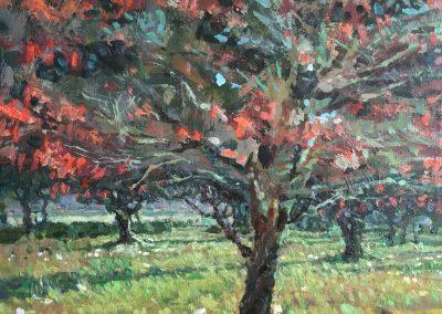 "Cameron Smith - ""Dogwood and Magnolia"", 12x12, oil over acrylic"