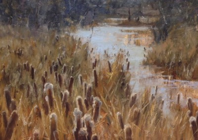 """Roger Dale Brown - """"Cattails"""", 24x36, oil SOLD"""