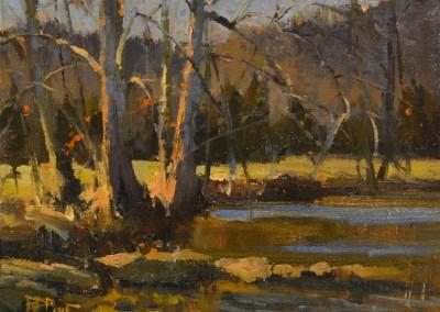 "Roger Dale Brown -  ""November on Howards Creek"", 9x12, Oil, SOLD"