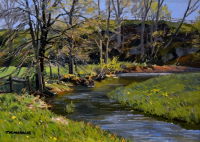 "TM Nicholas - ""Trout Stream"", 12x16, Oil"