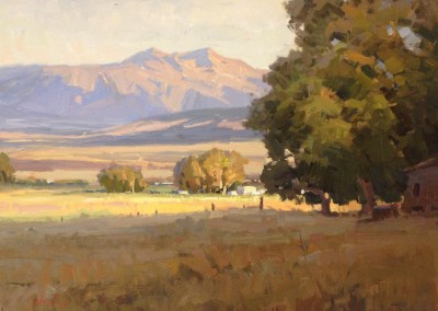 "John Poon - ""Mornings Reach"", 18x24, Acrylic, sold"