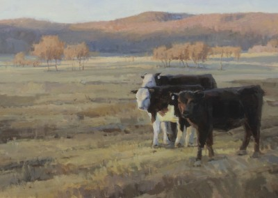 "John Poon - ""Cows at Pasture"", 24x48, Acrylic, Sold"
